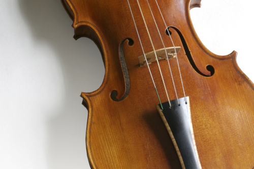 Entdecke die Musikschule